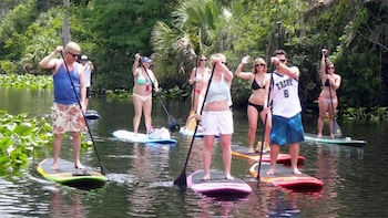 Wekiva Springs Stand-Up Paddleboard Tour