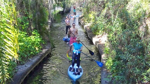 Group paddle boarding down a river in Orlando