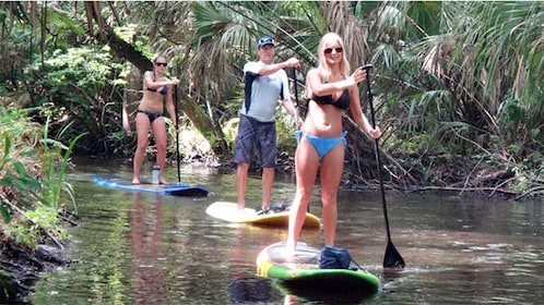 Paddle boarding group activity in Orlando