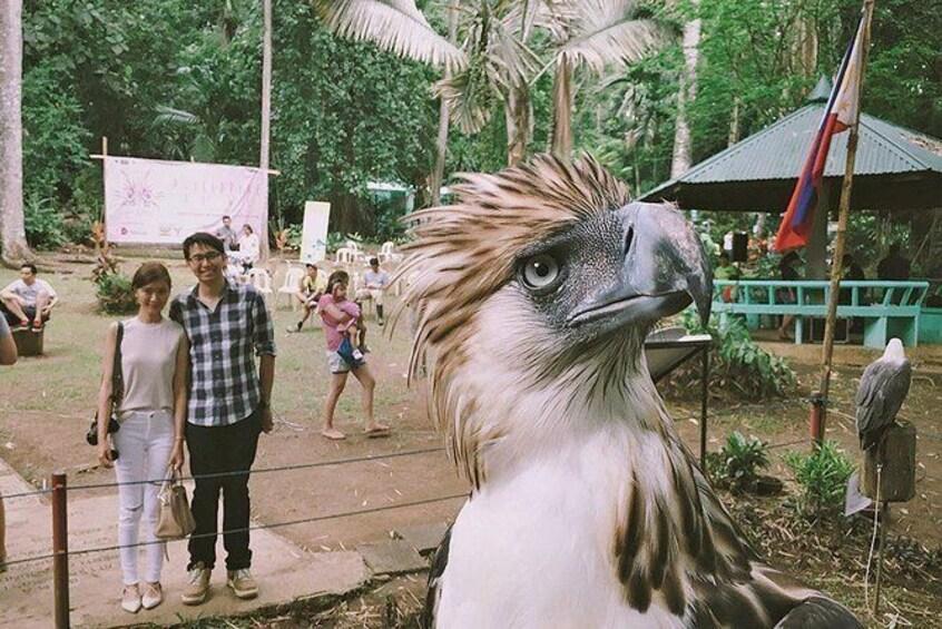 Show item 4 of 5. Davao City Tour W/ Philippine Eagle