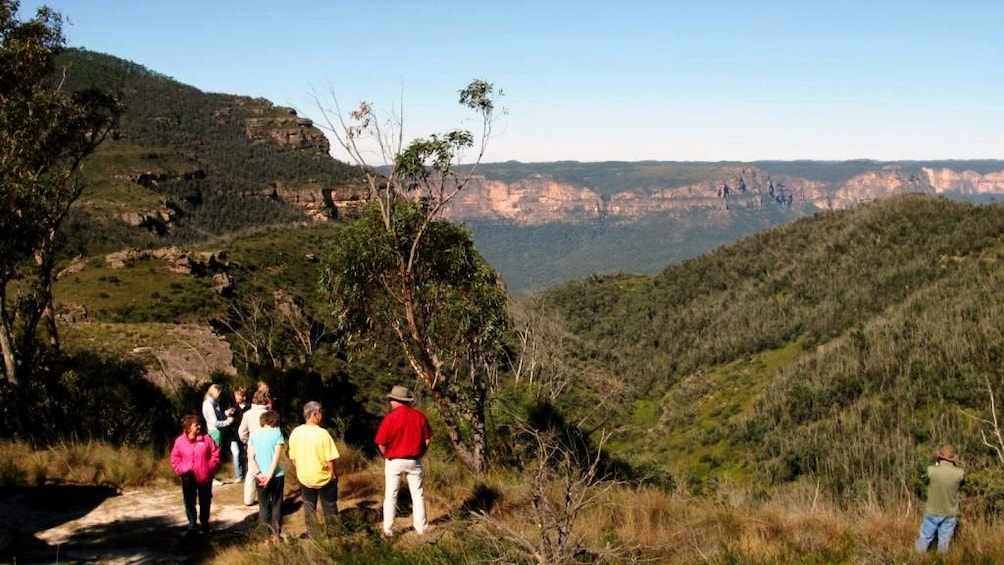 Show item 1 of 4. Hiking group looking out at the tree-covered mountains in Sydney