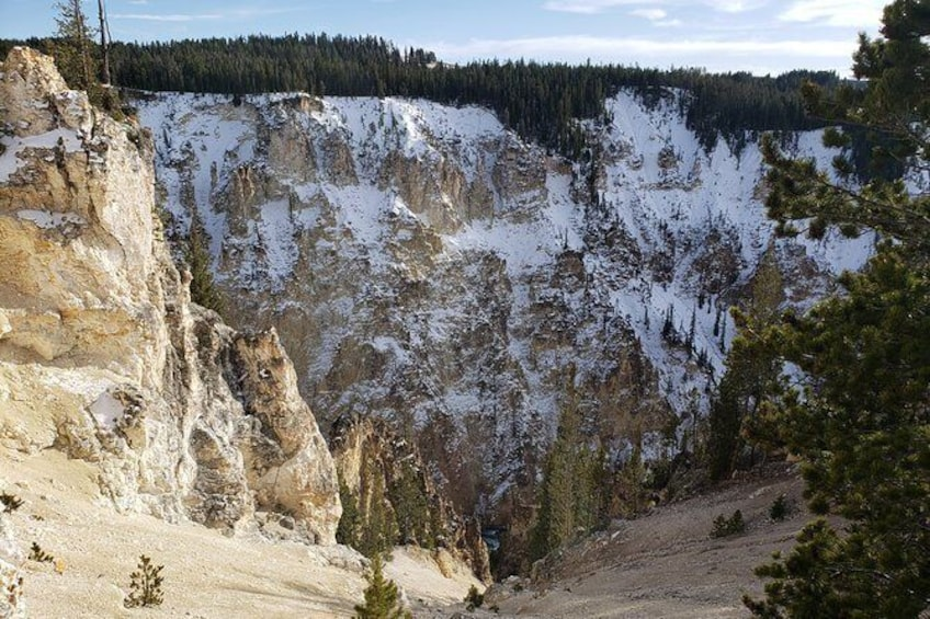 Show item 4 of 11. Full Day Yellowstone Step-on Guide Experience: Backseat Guider