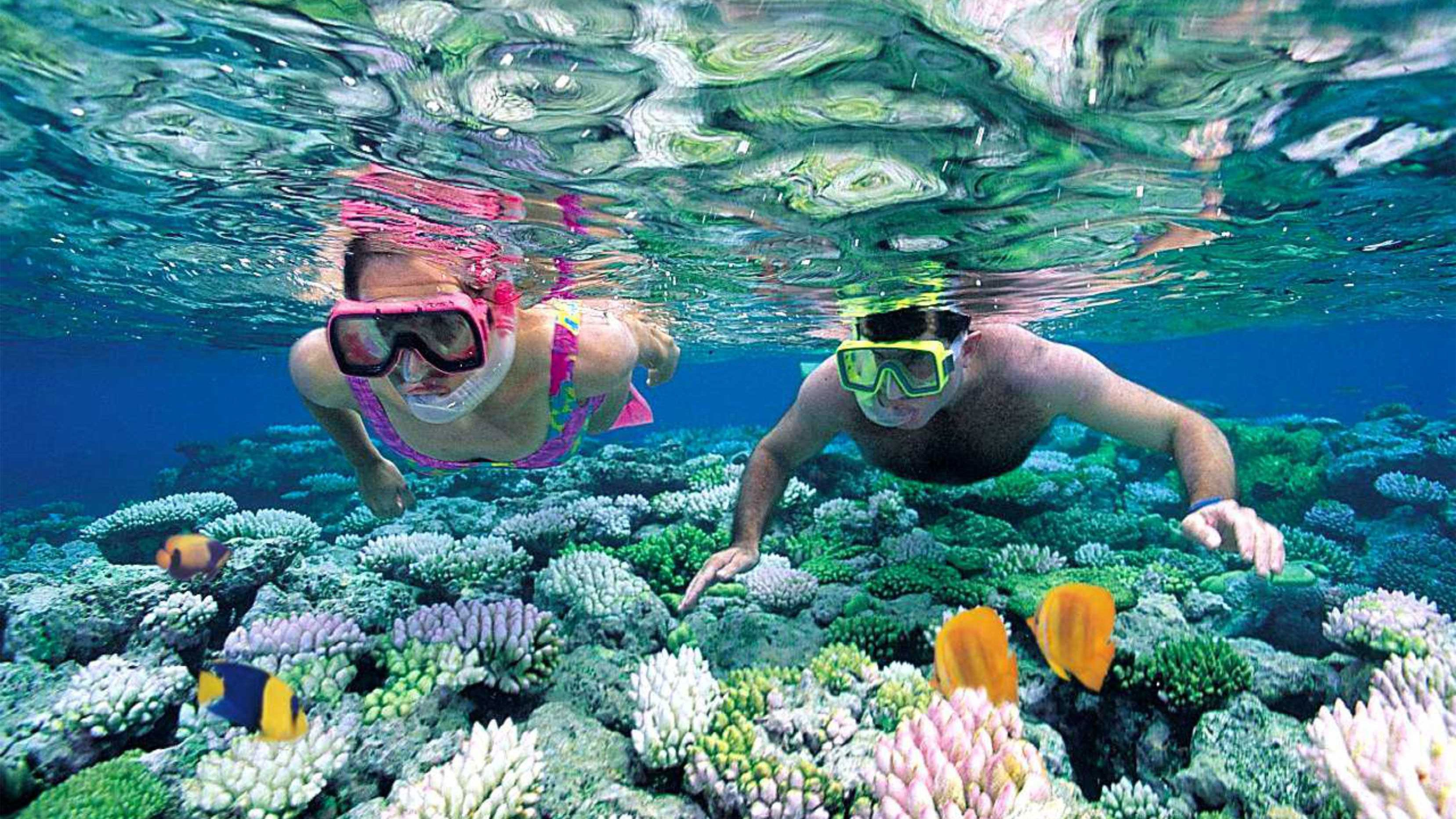 Snorkeling couple looking at coral reef in Fiji