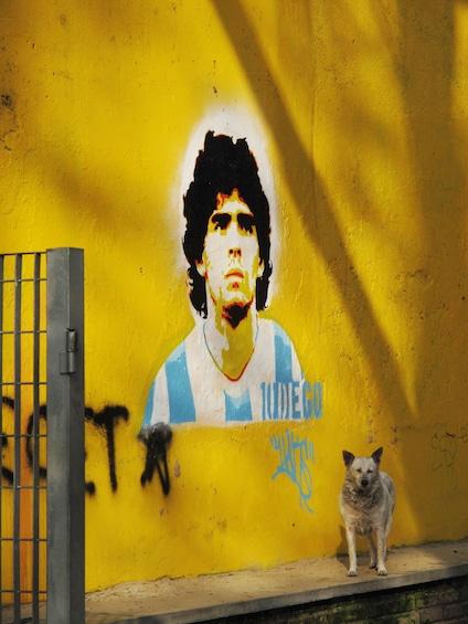 Apri foto 5 di 10. Boca Juniors Stadium Tour
