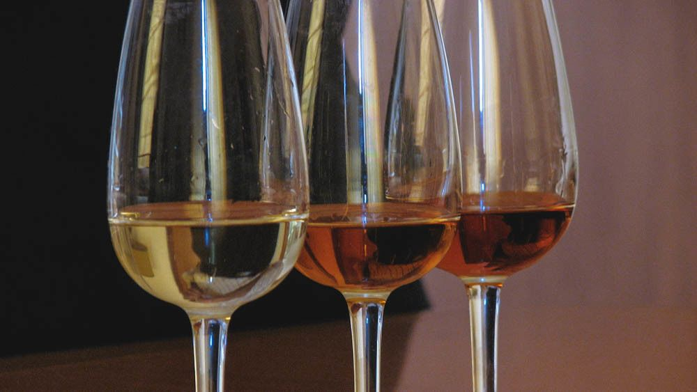 Close up of glasses filled with white wine.