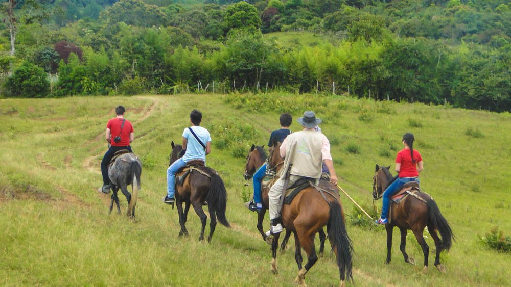 Landscape view of grassy area with several people riding horses.