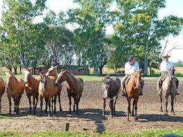 Horseback Riding And Countryside Day from Buenos Aires