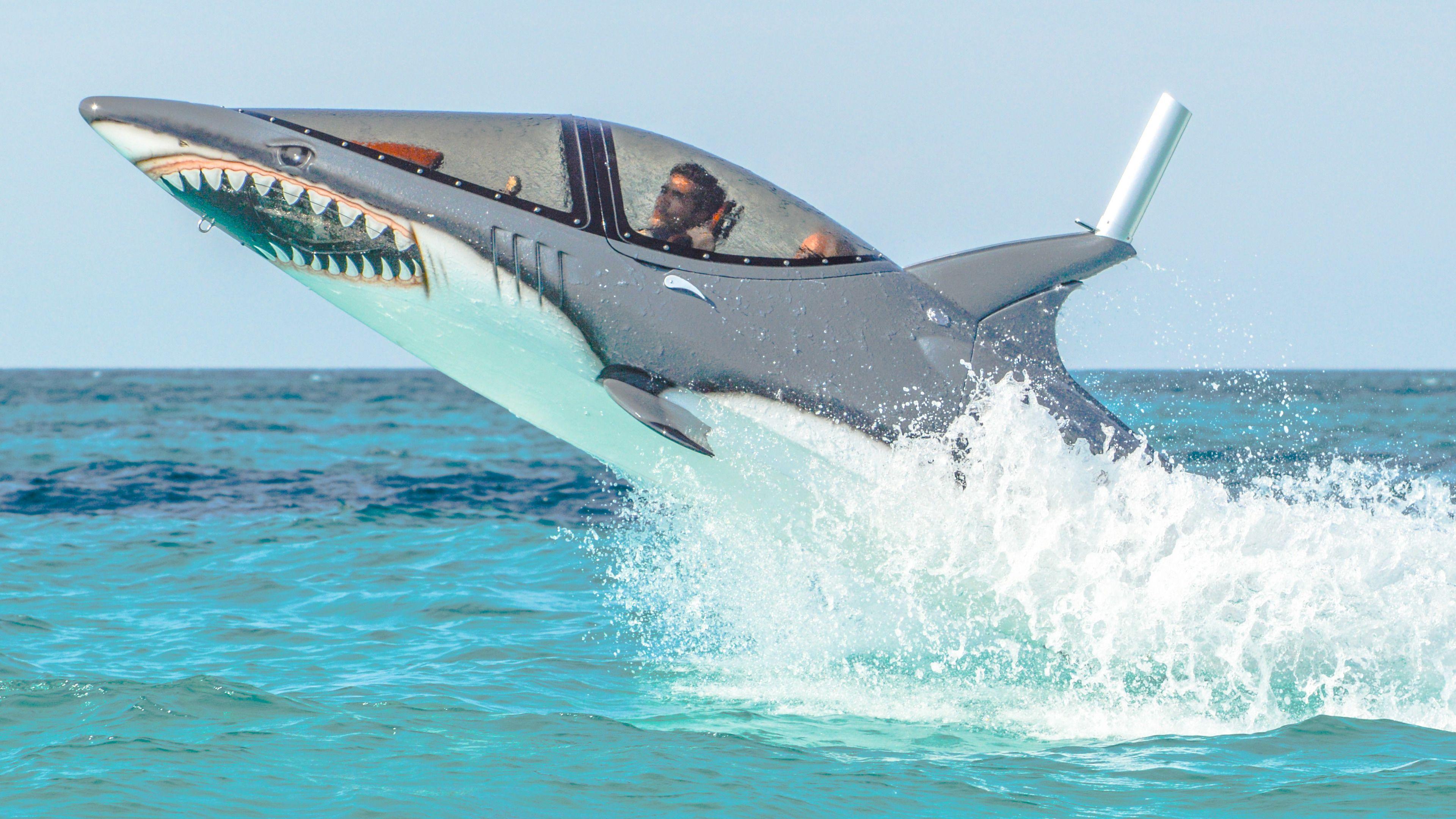 Seabreacher Experience in Cancun