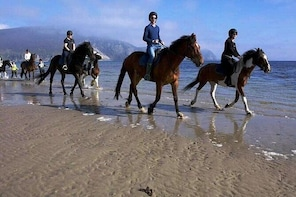 Beach & countryside horse riding. Donegal. Guided. 1 & 2 hour options.
