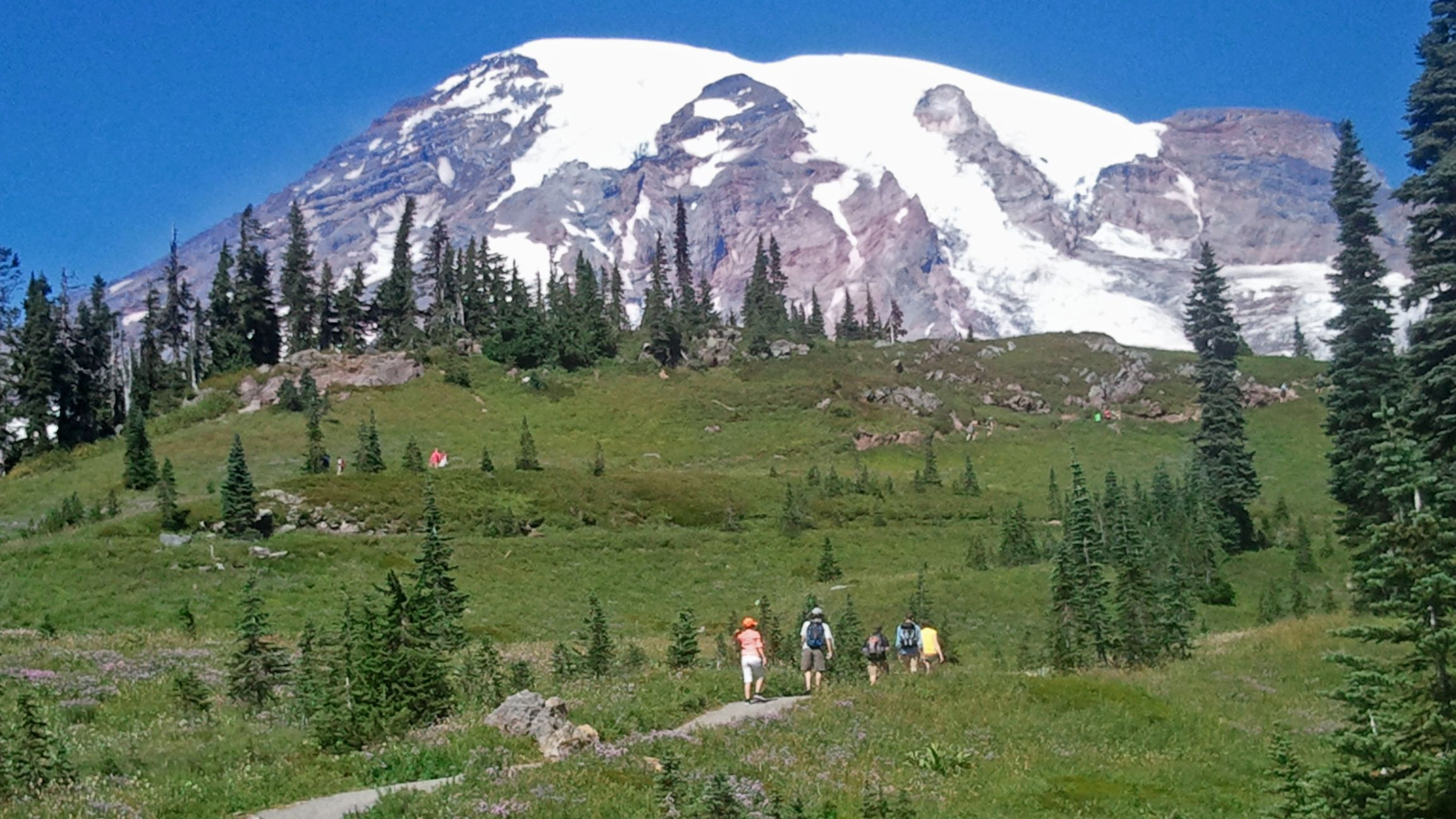 Mount Rainier Tour