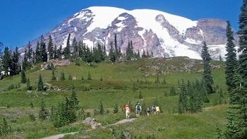 Mt Rainier Tour