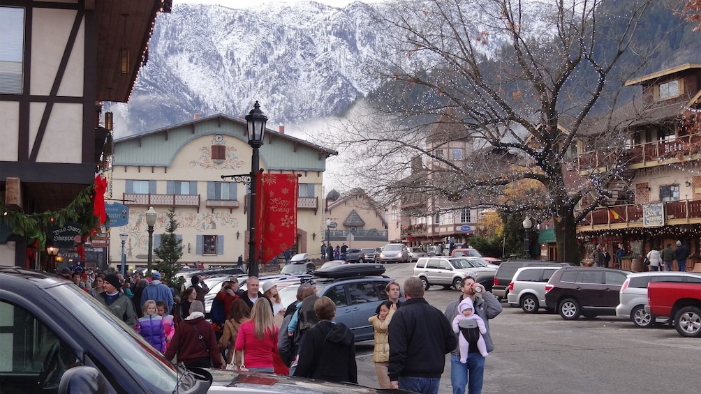 Show item 6 of 6. Street view of Alpine Village with snowy mountain in the distance.