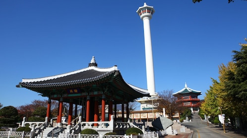 Temple in Busan City