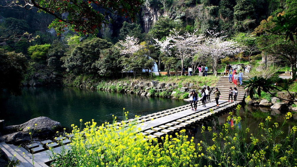 正在顯示第 1 張相片,共 5 張。 Visitors walk across bridge of stream