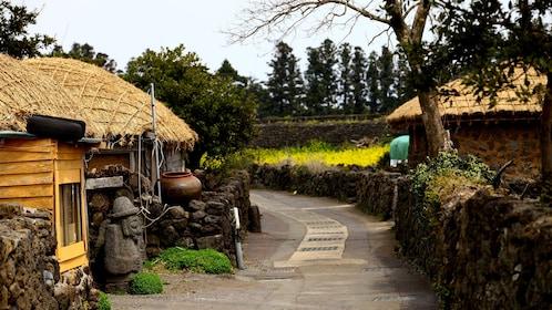 Thatch roof huts split by a path on Jeju Island South Korea