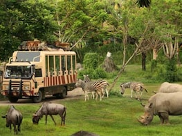 Bali Safari Promo July for Domestic (Buy Now, Visit Later)