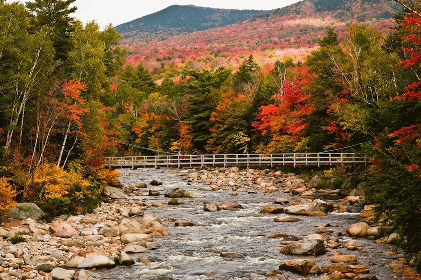 Show item 5 of 10. Kancamagus Scenic Highway Self-Driving Tour