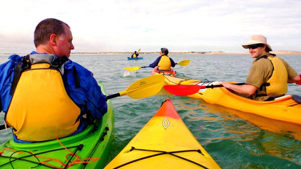 Full-Day Coorong Kayaking Tour
