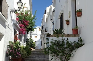Guided Walking Tour of the Old Town of Frigiliana