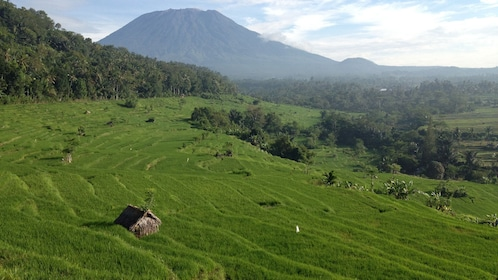 mountain view and little hut in bali
