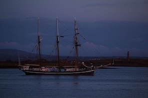 Great Scattery Island experience depart from Kilrush. Clare. Guided. 5 1⁄2 ho...