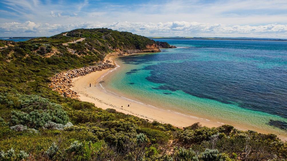 Show item 8 of 8. walking along the beach in Australia