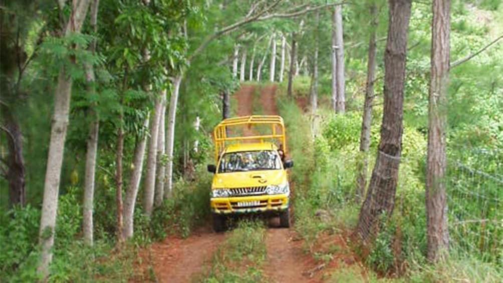 Show item 1 of 7. Aito 4WD safari Tour in Bora Bora