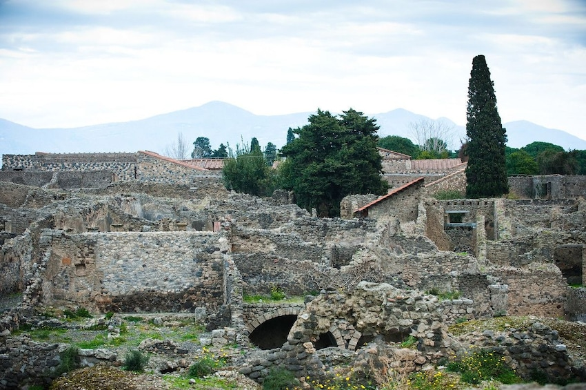 Apri foto 2 di 8. Skip The Line Trip to Pompeii by Train from Sorrento