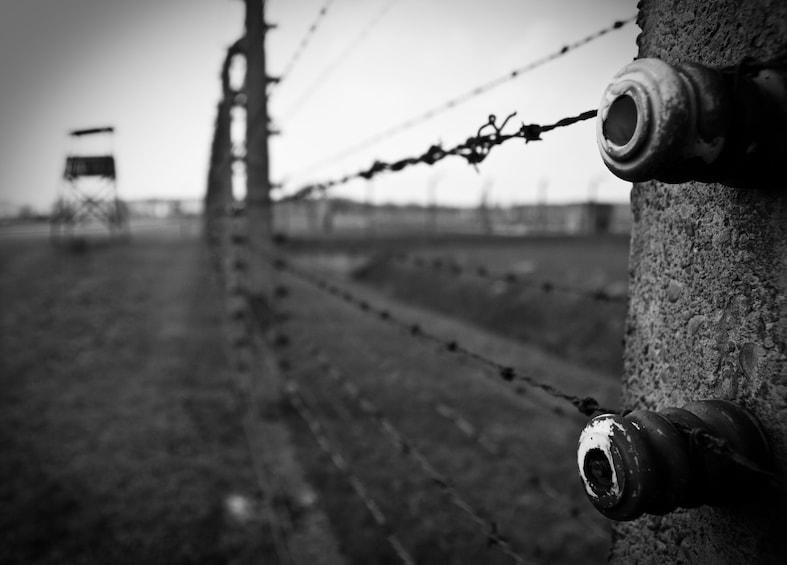 Öppna foto 2 av 6. Guided Tour of Auschwitz-Birkenau Concentration Camp Memorial