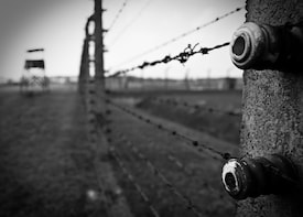 Indlæs billede 6 af 6. Guided Tour of Auschwitz-Birkenau Concentration Camp Memorial