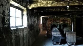 Indlæs billede 3 af 6. Auschwitz-Birkenau Crematorium in Poland