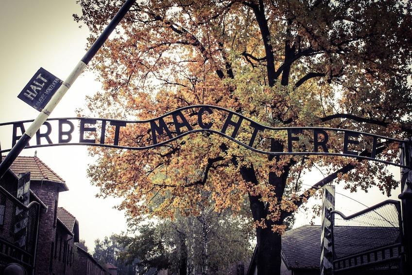 Foto 4 van 6. Guided Tour of Auschwitz-Birkenau Concentration Camp Memorial