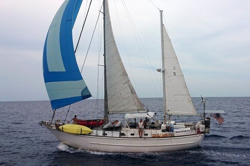 Sailing Tour of Vineyard Haven Harbor and Sound