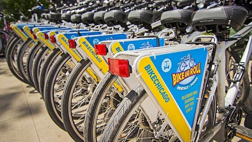 Bike and roll rentals in Chicago
