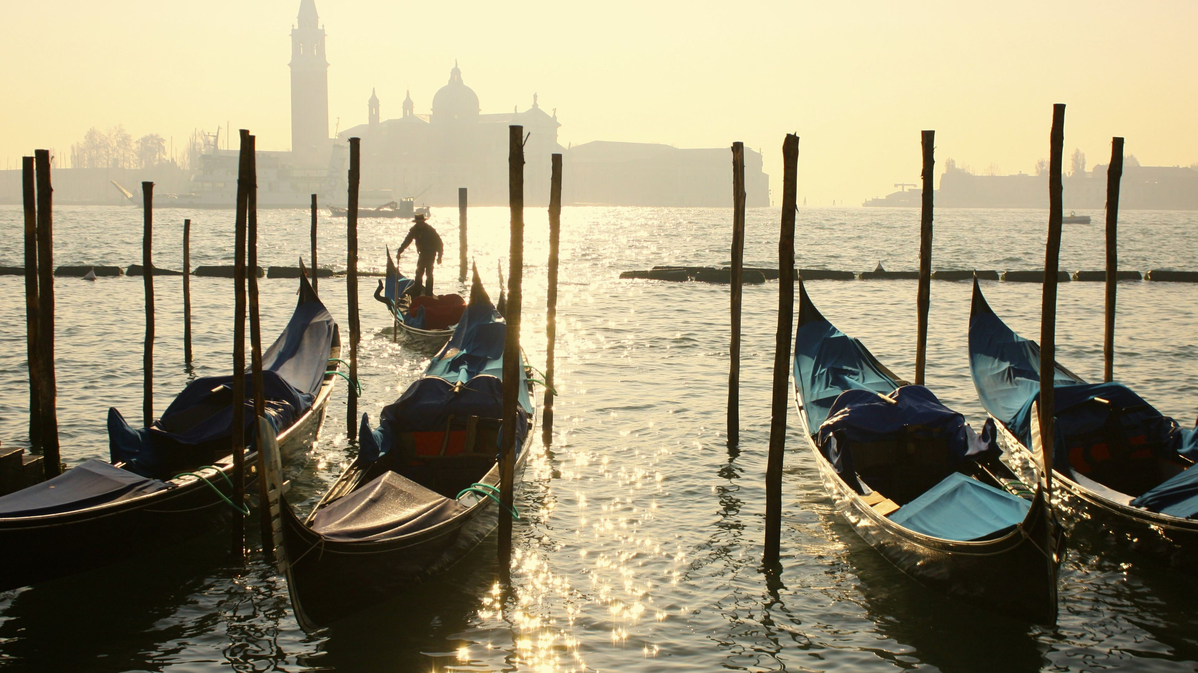 Gondolas are anchored in the waters of Venice