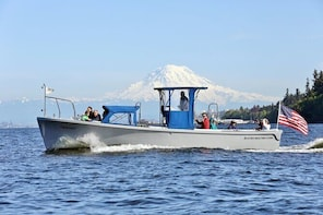 2 Hour Guided Boat Tour in Gig Harbor and Narrows Bridges