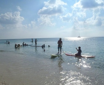 cayman-stand-up-paddle.jpg