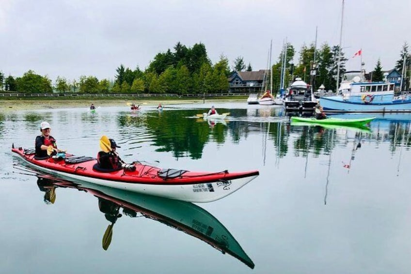 Show item 5 of 7. Ucluelet Harbour Tour