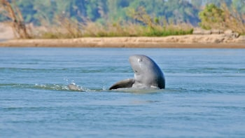 2 Days Private Guide Tour to Kratie & Irrawaddy Dolphins