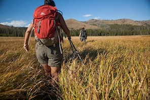 Full-Day Private Hike in Yellowstone National Park