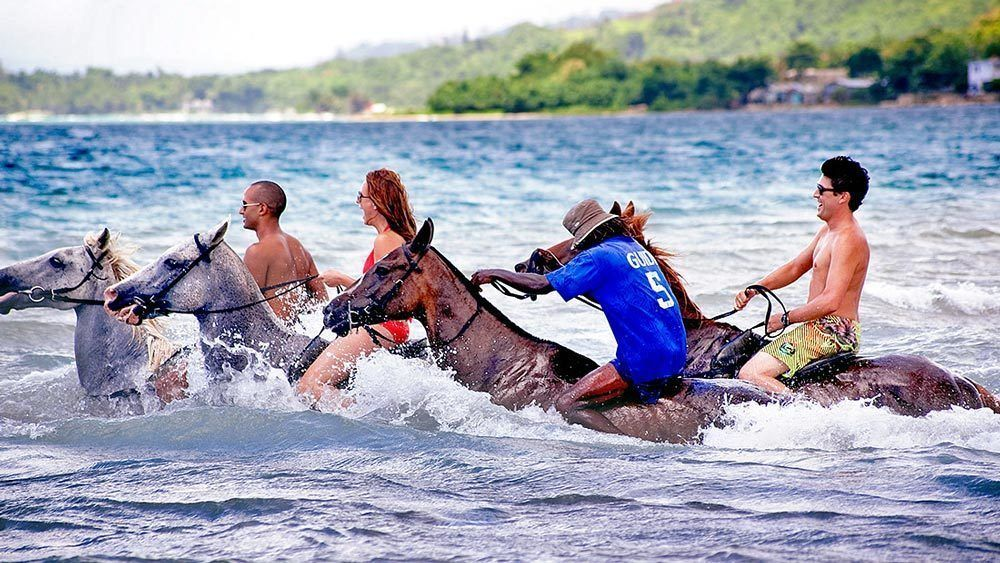 Tourists riding horses through water.