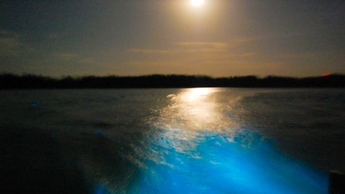 View of water illuminating from boat.