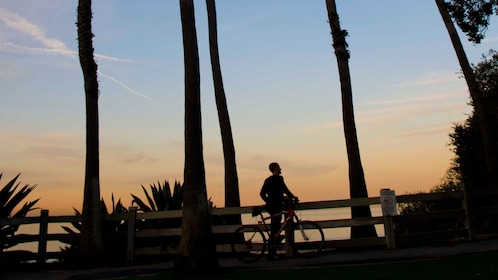 Silhouette view of cyclist with bike.