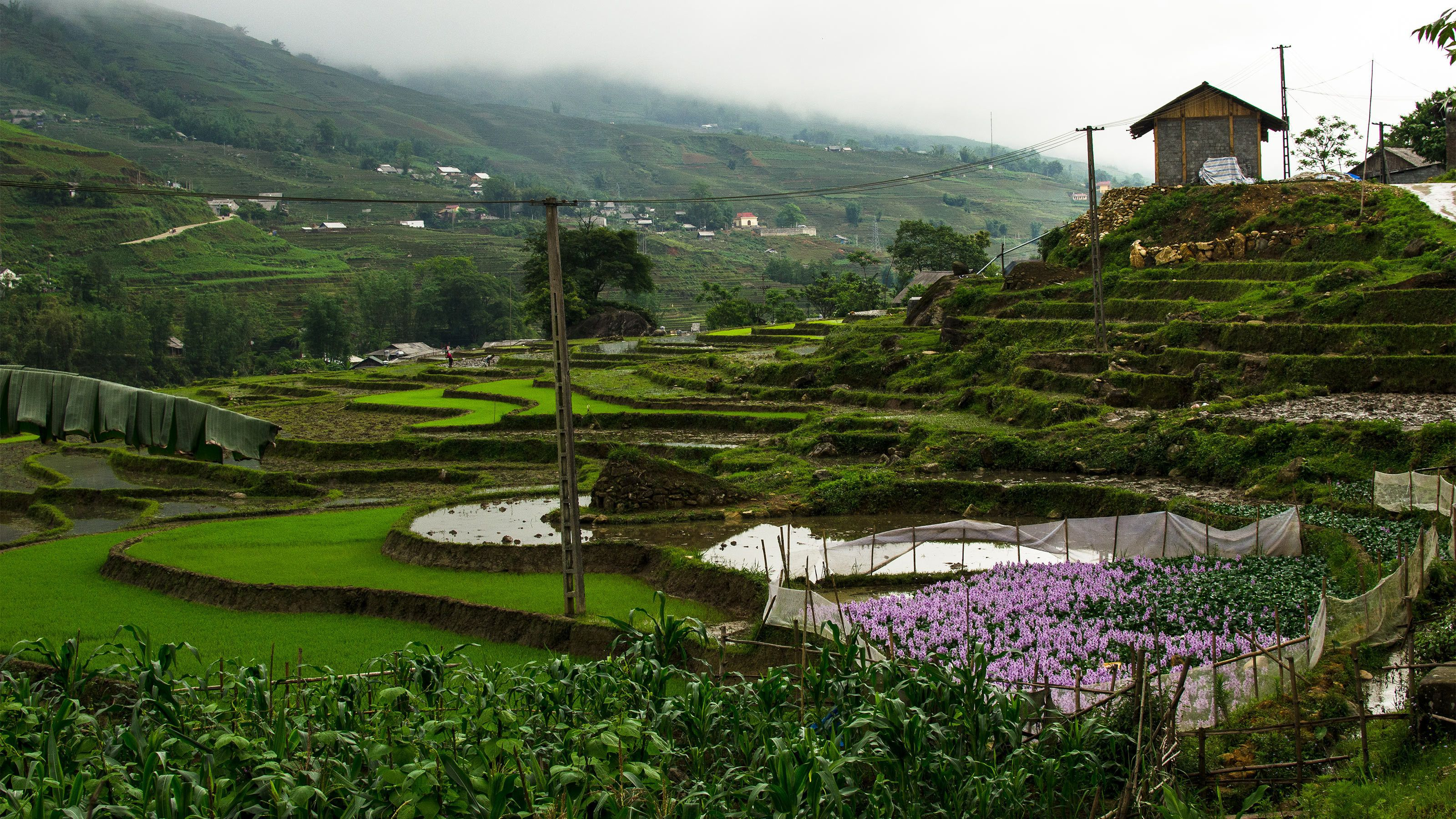 4-Day Sapa Tour with Home Stay