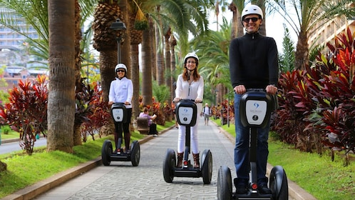 Segway riding group on a tree-lined path in Tenerife