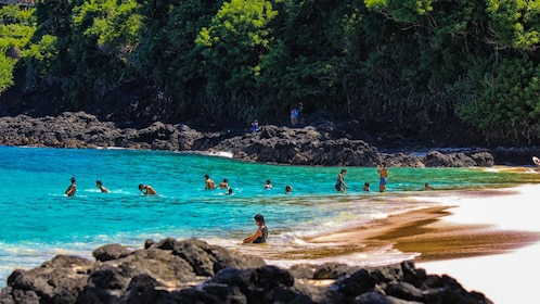 Landscape view of beach surrounded by forest, with clear blue water and tourists swimming.