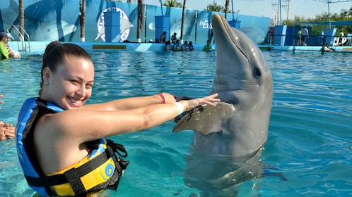 Woman swimming with a dolphin in Puerto Vallarta