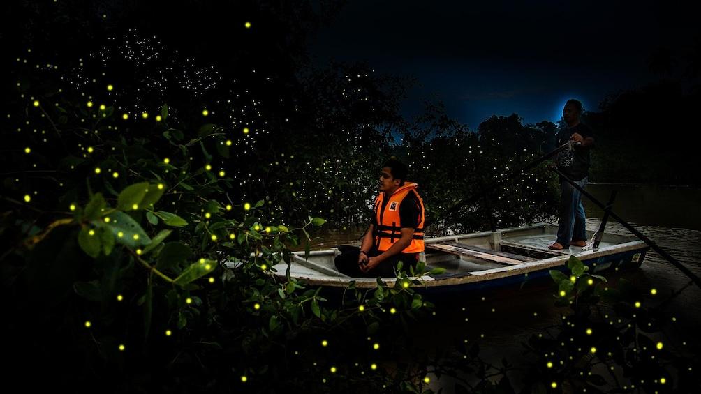 正在顯示第 1 張相片,共 7 張。 Private Fireflies Night Excursion with Dinner