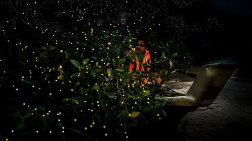 kampung-kuantan-fireflies-6.jpg