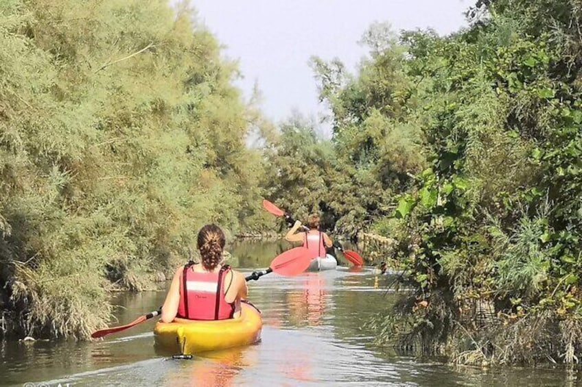 Show item 1 of 5. Private Kayak Tour in the Venetian Lagoon
